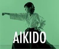 Akido Martial Arts