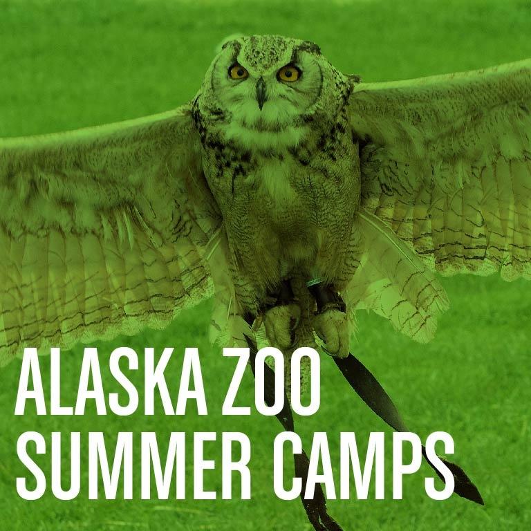Alaska Zoo Summer Camps